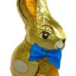 1100257_chocolate_bunny